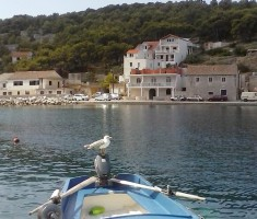 Galeb na čamcu